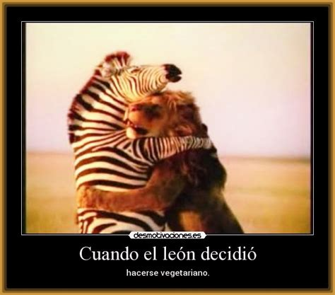 imagenes de leones con frases imagui lindas frases con tigres imagenes de tigres