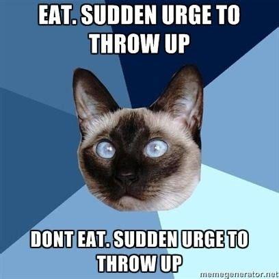 Diabetes Cat Meme - 328 best endometriosis images on pinterest beautiful