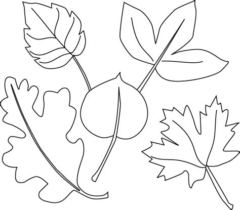 Leaves Coloring Page leaf coloring pages coloring pages to print