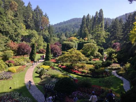 Butchart Gardens Tours by Butchart Gardens Picture Of A E Vancouver Tours