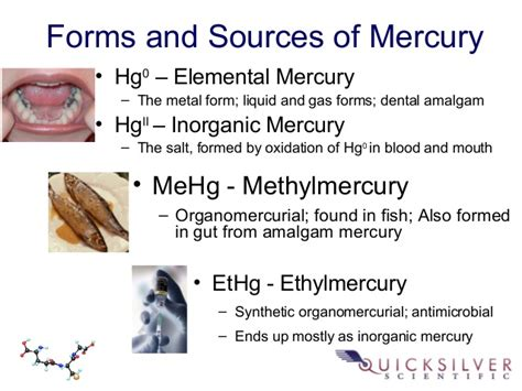 Explain The Different Sources Of Mba by Quicksilver Scientific Clinical Mercury Testing