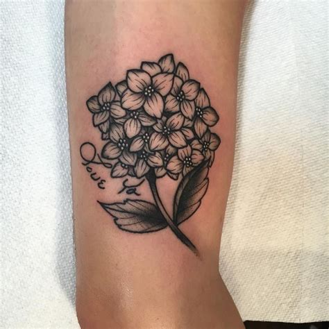 hydrangea tattoo best 20 hydrangea ideas on delicate