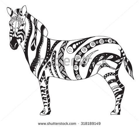 zentangle zebra pattern zebra zentangle stylized vector illustration freehand