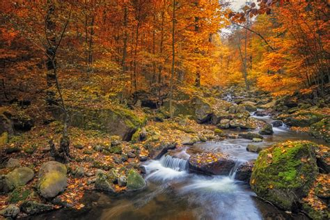 The In Autumn 35 beautiful fall photos and time lapse