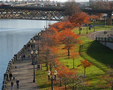 Park Portland Oregon by Forest Park Washington Park Laurelhurst Park