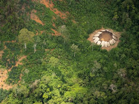 amazon tribe photos emerge of an uncontacted amazon tribal community in