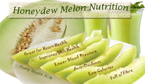 Squishy Sweet Honey Melon honey dew nutrition facts nutrition ftempo