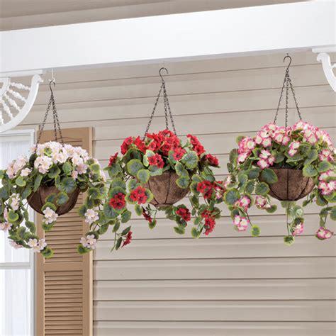 Lu Gantung Untuk Teras Rumah 5 jenis tanaman gantung untuk mempercantik rumah anda my griya
