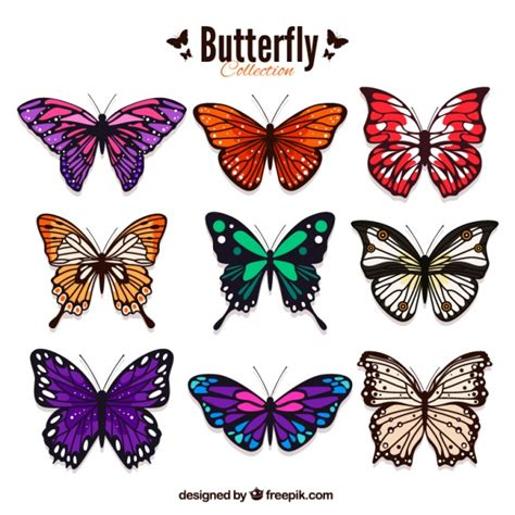Butterfly Colour pack of colored butterflies in realistic style vector