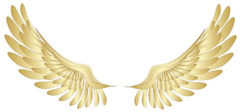 golden wings декор png аватар клипарт дизайн pinterest