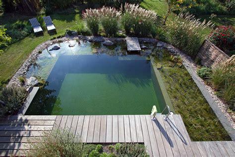 schwimmteich garten projekt 1 schwimmteich naturpool gartenteich