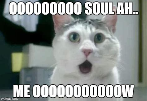 Omg Cat Meme - omg cat meme imgflip