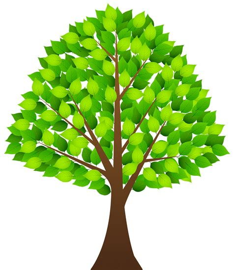 tree clipart tree clipart clear background pencil and in color tree
