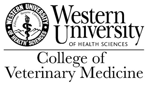top veterinary colleges in the us image gallery veterinarian colleges