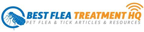 flea treatment for house diatomaceous earth natural flea treatment for house and pets