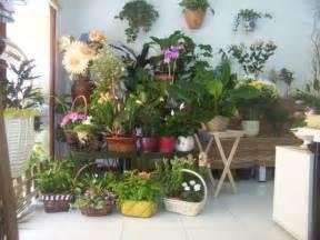 atractiva  Flores De Invierno Exterior #1: proteccion_del_frio.jpg