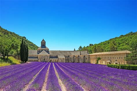 provence france perfectly pered in the hotel du vin france com best tours packages guides sightseeing and