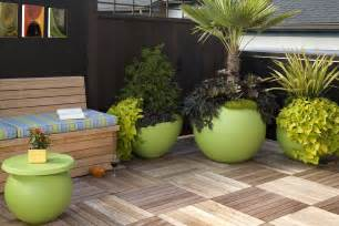 House Plant Pots 10 Modern Indoor Plant Pots That Will Dress Up A Home