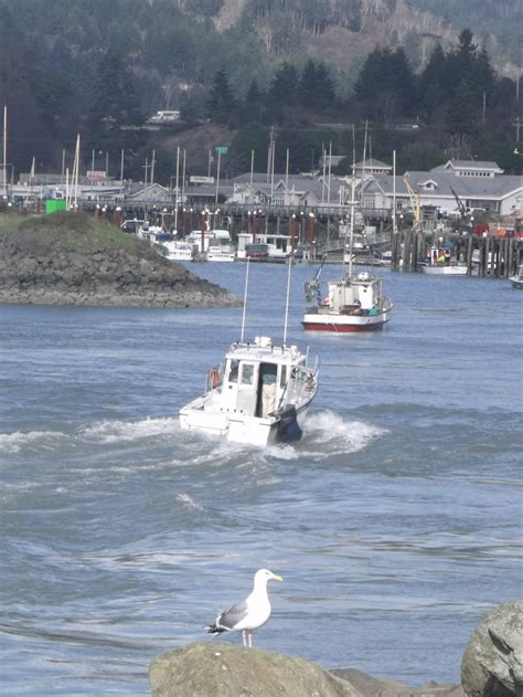 tide brookings oregon 17 best images about or oregon coast cities from newport