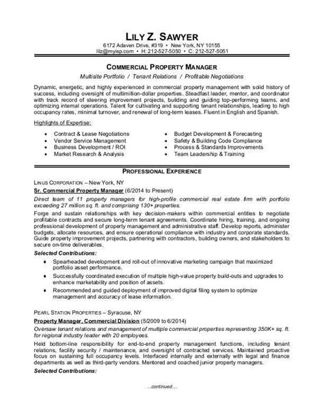 resume writing tips for experienced professionals 1000 ideas about sle resume on resume