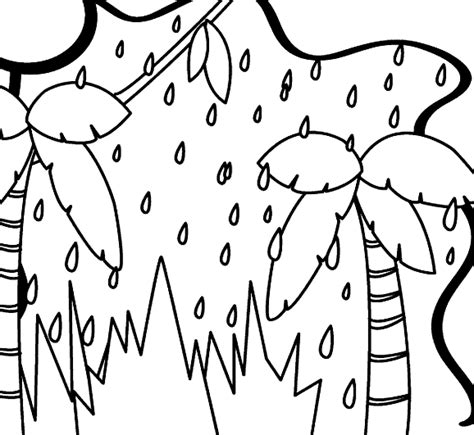 Rainforest Coloring Pages Coloring Pages To Print Rainforest Coloring Page
