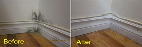 mold in bedroom heavy bedroom mold 28 images heavy bedroom mold too much crown molding hooked on houses