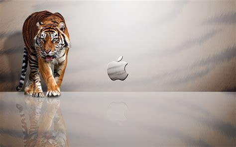 wallpaper for mac pinterest extinct animals screensaver for macbook widescreen 6 wide