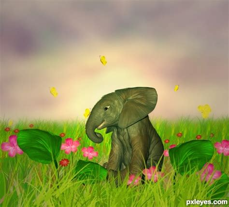 Elephant In The Garden by Elephant In Garden Picture By Priyakamble For Elephant Photoshop Contest Pxleyes