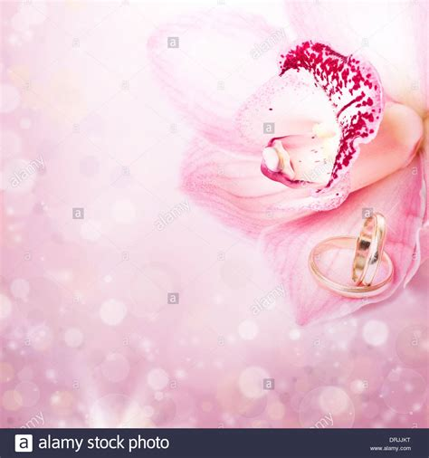 Wedding Background Pink by Wedding Rings Pink Background Www Pixshark Images