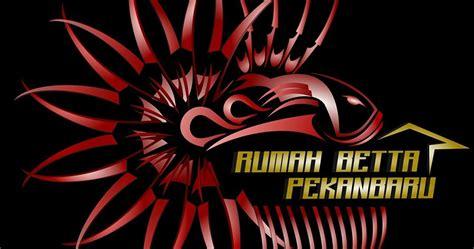 Jual Makanan Ikan Cupang Pekanbaru tentang rumah betta pekanbaru rbp rumah betta cupang