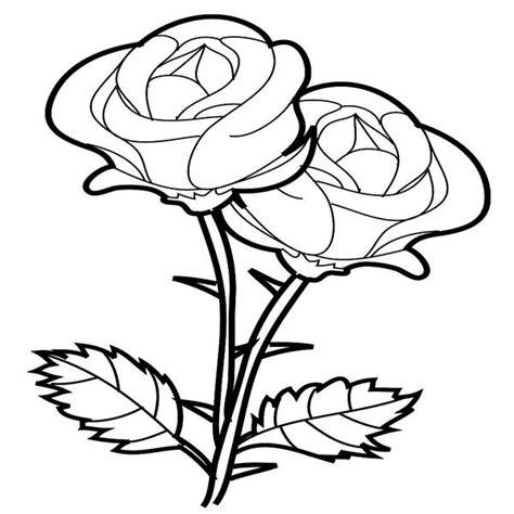 imagenes wallpaper para dibujar imagenes de flores para dibujar search gato