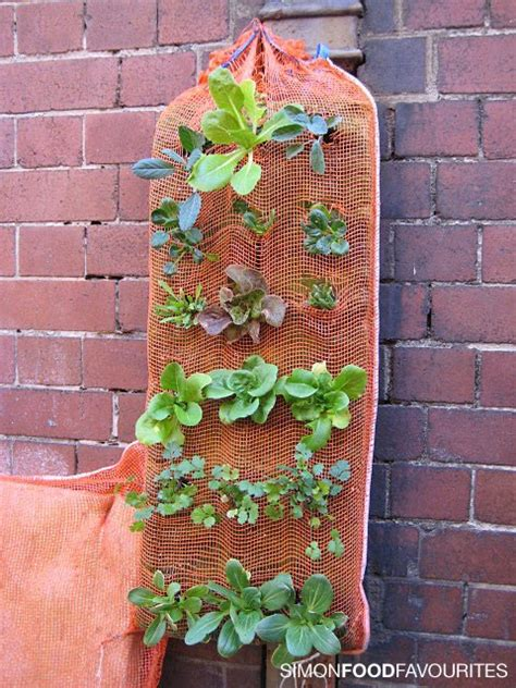 Cheap Vertical Garden Inside Green A Vertical Garden On The Cheap