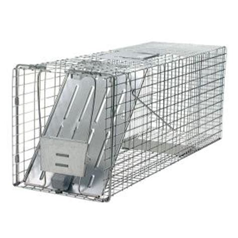 havahart large 1 door live animal cage trap 1079 the