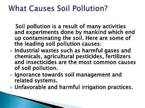 Pollution Cause And Effect Essay by 8 Tips For Crafting Your Best Land Pollution Essay