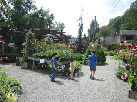 Creekside Garden Center by Pumpkin House Time Review Of Creekside Gardens