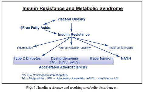 do resistors lose resistance time reversing insulin resistance to reduce type 2 diabetes nutrition review