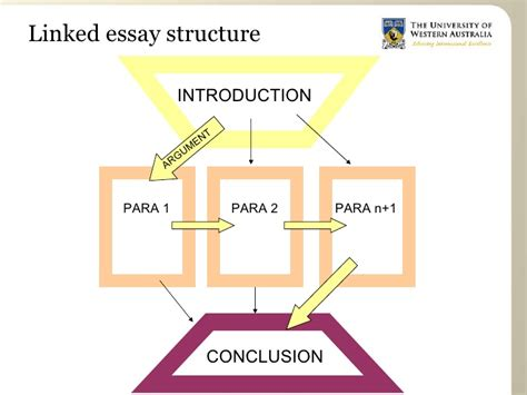 essay structure uwa essay structure for arts students