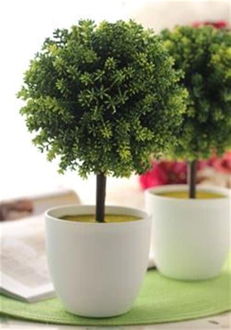 piante ornamentali da interno finte piante ornamentali finte paperblog