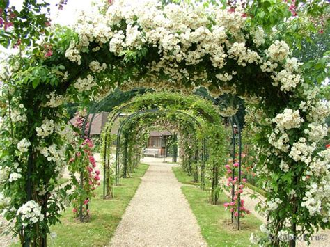flowers gardens and landscapes 13 of the most beautifully designed flower gardens in the