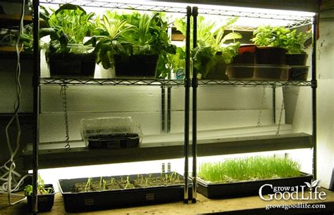 seed starter grow lights build a grow light system for starting seeds indoors