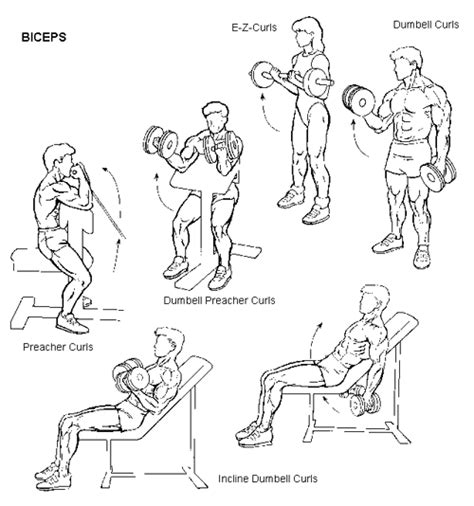 bicep workouts for top ten indian bodybuilders
