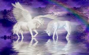 unicorns horse cloud rainbow fantasy wallpaper for your
