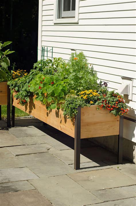 raised cedar planter box planter boxes standing height cedar raised garden