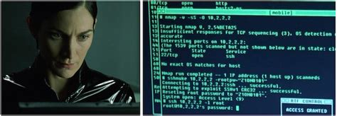 nmap tutorial point how to install nmap from source
