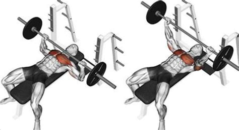 how to use a bench press bench press how to increase your 1 rep max fitness workouts exercises