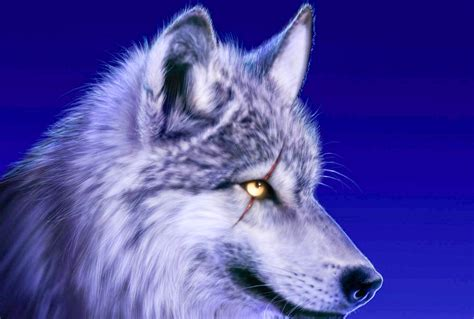 Topi Jaringtrucker Wolf Hight Quality awesome wolf www imgkid the image kid has it