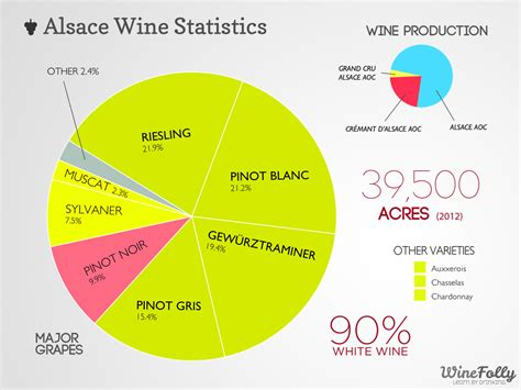 wines of alsace guides to wines and top vineyards books alsace wine region a guide for enthusiasts wine folly