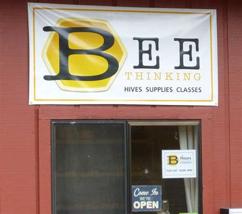 bee thinking top bar hive bee thinking top bar hive 28 images top 25 ideas about bee hives on pinterest the