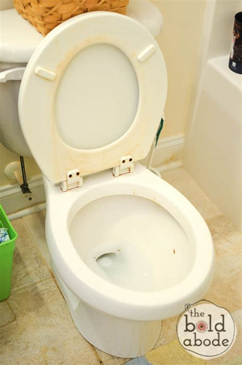 Bathroom Stinks by How To Freshen A Really Stinky Bathroom The That