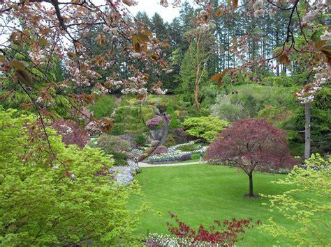 imagenes jardines con flores exuberantes jardines con plantas y flores ex 243 ticas